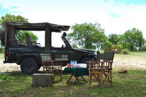 Luxury African Safaris, Luxury African Holidays, Luxury African Company