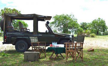 Wildlife-Viewing-Vehicle