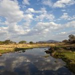 Ruaha river view from Ruaha River Lodge