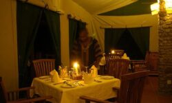 0304 Dinning Tent by Night