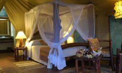 0304 Guest Tent Interior