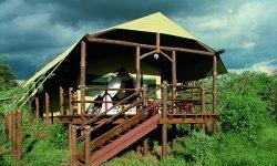 0601 Tent Exterior
