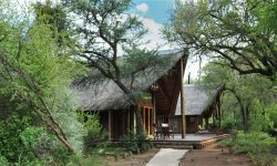 1-signature-black-rhino-game-lodge