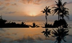 10-alfajiri-palm-heron-pool-sunrise