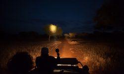 Night game drive at Kuro Tarangire