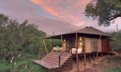 african_safari_ngala_tented_camp_tent