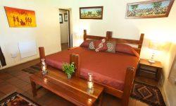 ants-nest-davidson-suite-rooms-3