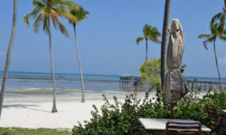 beach_view_theresidence_zanzibar