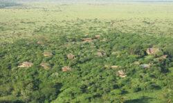 birdseye-view-of-lewa-wilderness