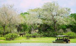 boat_safari