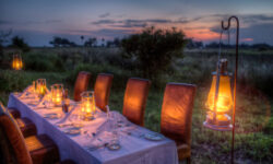 bush-dinner-16_hi-res