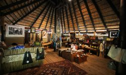 _copyright_beverly_joubert_selinda_camp_botswana_4139