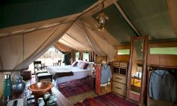 _copyright_dook_selindaexploreres_camp_botswana_4423