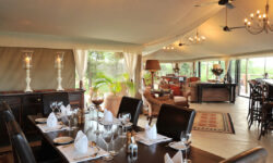 elephant_camp_dining