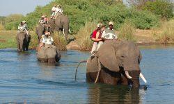 elephant_ride_5