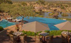 Four Seasons Serengeti view of Elephants
