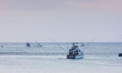 hemingways-watamu-boats-14