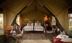 kimondo-camp-guest-bedroom