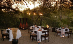 Little Bush Camp - Dining