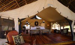 luxurious-tents-at-jongomero