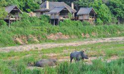 Jock Safari Lodge Exteriors