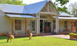 morukuru-farm-house-nyala-feeding-on-the-lawn