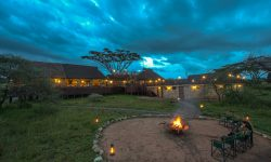 ndutu_luxury_022