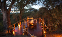 Dining Terrace under Baobab at Olivers Camp