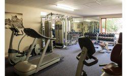 savanna-gym