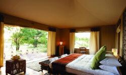 sayari-camp-guest-tent-bedroom