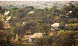 sayari-camp-tent-layout