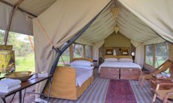 Guest Tent at Serengeti Under Canvas