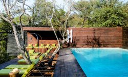 singita-sweni-lodge-7