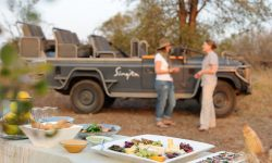 singita-sweni-lodge-game-drive5