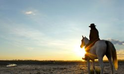 sun-set-ride