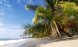 tides-beach