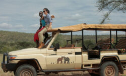 elephant-watch1