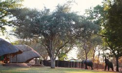 ff0259_imbabala_safari_lodge_zimbabwe