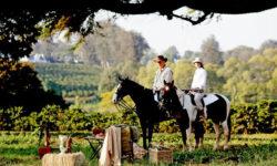 Horse Riding to Picnic at The Manor at Ngorongoro