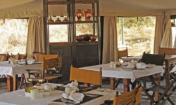 Breakfast Tent at Serengeti Pioneer Camp