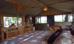 selous-mbuyu-honey-moon-tent-3