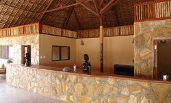 selous-mbuyu-reception