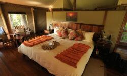 susanfredricksen_cat9_bedroom