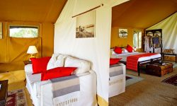 tented-guest-suite