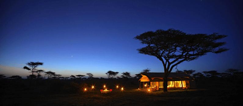 beyond-serengeti-under-canvas