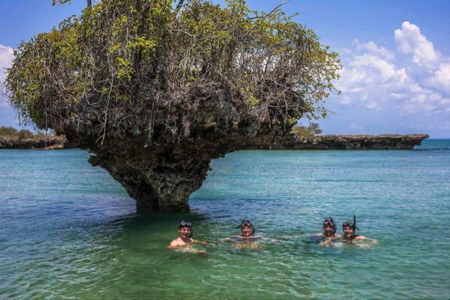 Beach Holidays in Zanzibar