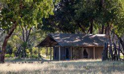 Davison's Camp 7