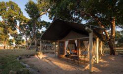 Davison's Camp 8