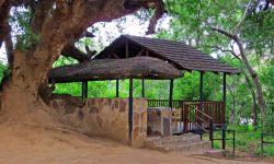 Molema Bush Camp 1