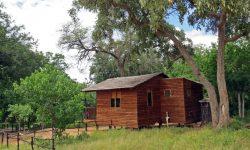 Molema Bush Camp 5